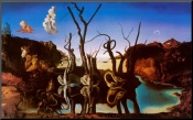 salvador-dali-swans-reflecting-elephants-c-1937