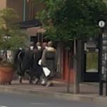 μοναχοί διασχίζουν τρέχοντας δρόμο στο Kyoto
