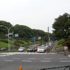 Το Τόκυο έχει πολύ πράσινο